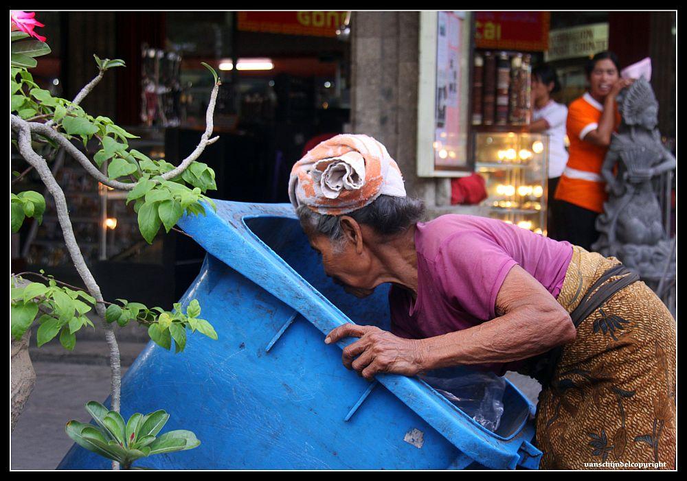 environment georgemonbiot sumatra rainforest destruction patrick moore